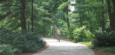 Bike rider on a trail along the GW Parkway
