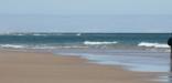 Atlantic Ocean beach at Cape Cod National Seashore
