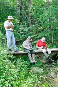 Volunteers and rangers document water data near a wooded stream