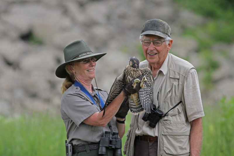 Meg and Mac McQueen assisting female juvenile peregrine falcon_2011_NPS