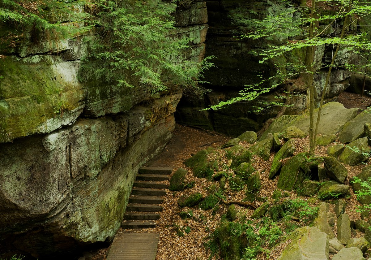 The ledges trail