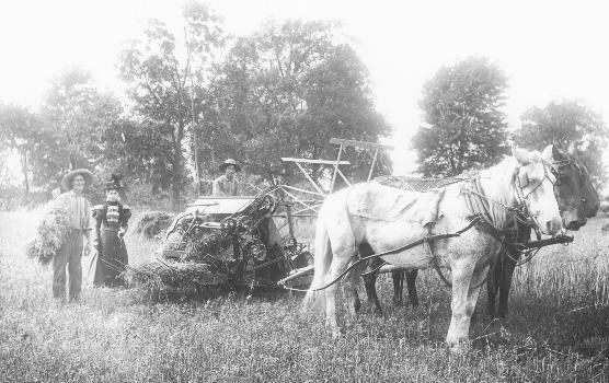 Historic photo of three farmers stand behind a hay bailer drawn by three draft horse.