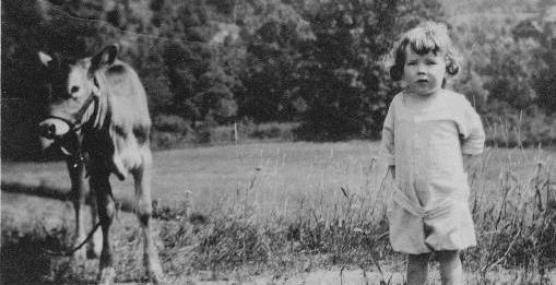 Historical photo of a young girl standing next to a cow in a farm field with dense woods in the background.