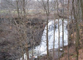 Brandywine Falls viewed from the boardwalk during a high flow time surrounded by leafless trees during the winter.