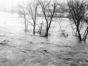 1913 flood, Peninsula.