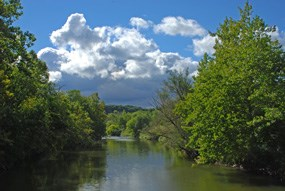 Cuyahoga River lined with deciduous trees along the banks under a partly cloudy summer sky.
