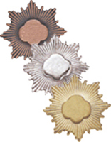 Girls Scout Medals