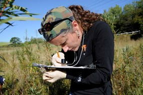 Biologist Sonia Bingham examines a wetland plant with a magnifier.