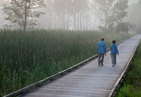 Walkers on Foggy Towpath Trail at Stumpy Basin