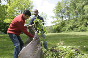 CVNP_Volunteer_Bagging_Garlic_Mustard2_Sara_Guren_285