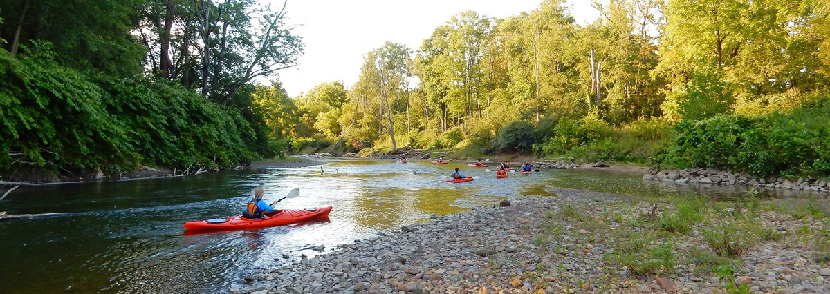 People paddle a group of orange kayaks around a pebbly bend in the river; the rest of the shore is lined in green shrubs and trees.