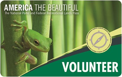 Front of the 2018 America the Beautiful Volunteer Pass