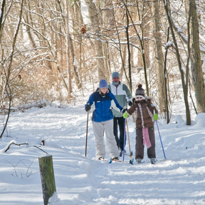 A family cross-country skis though trail.