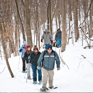 A group of visitors snowshoe up a snow covered path.