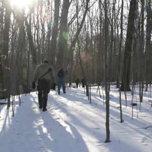 Hikers hike up a snow covered slope, as the sun shines though bare trees.