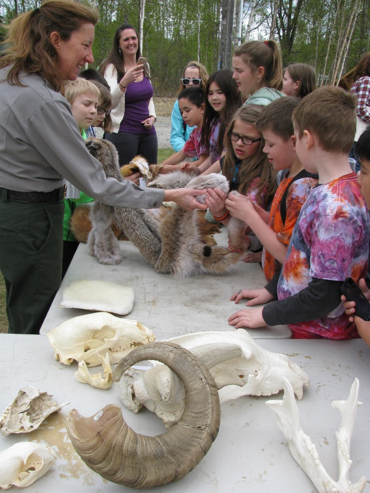 Ranger and children look at animal furs and skulls