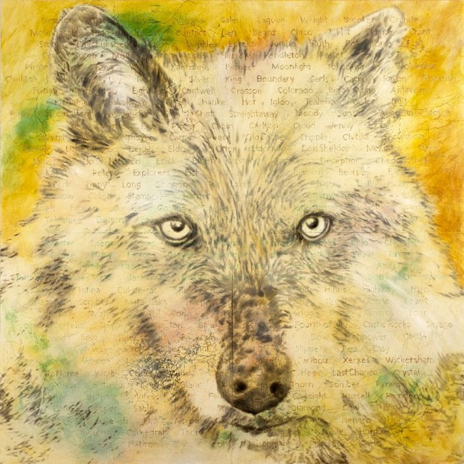 artwork depicting a wolf's face