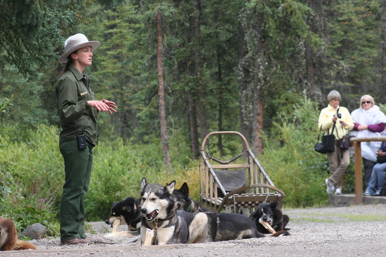 Ranger giving summer dog demo with traditional style sled