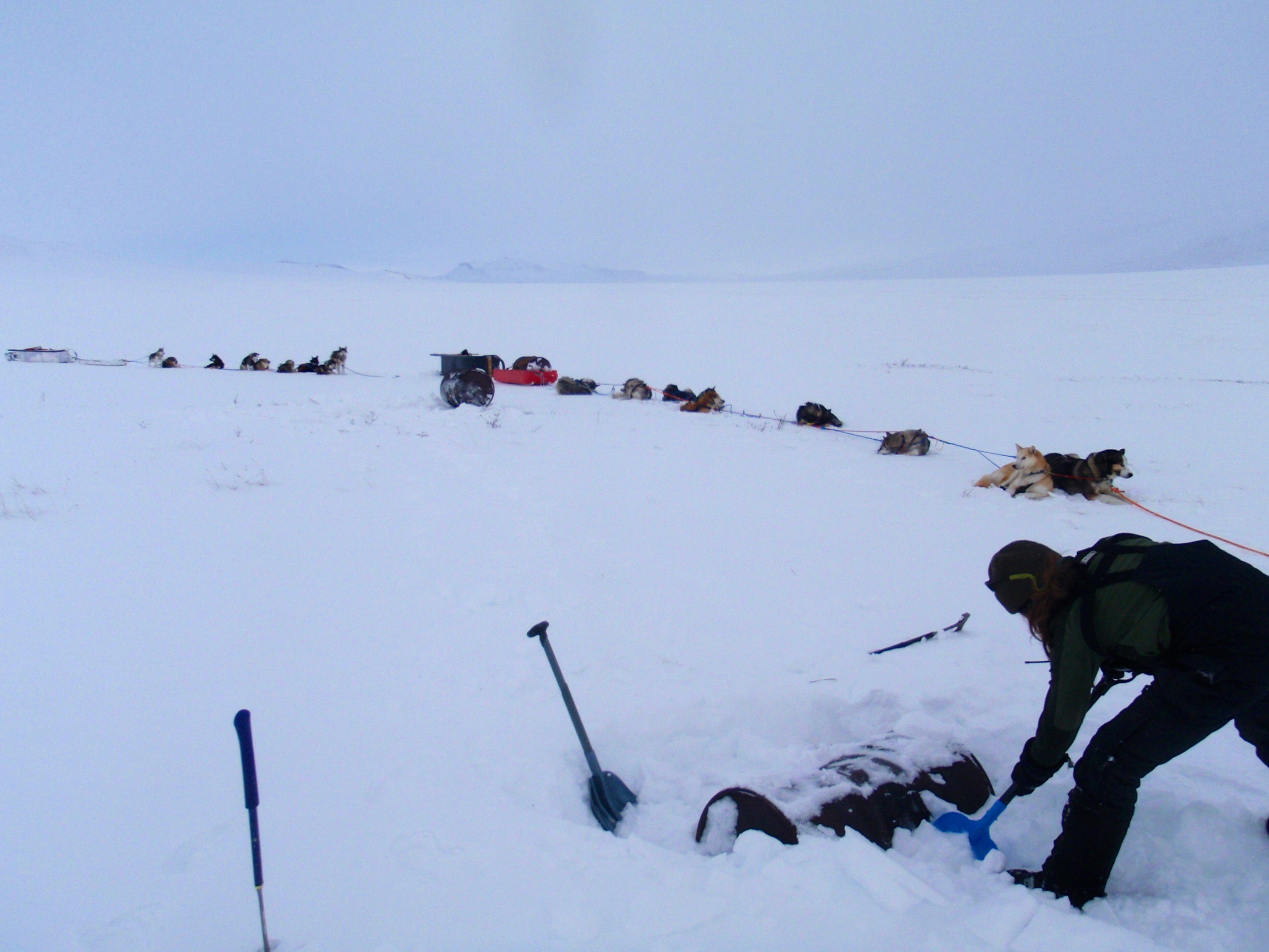 ranger digging out barrel in GAAR