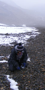 sampling near the terminus of a glacier