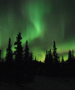 Dancing aurora in the dark night sky
