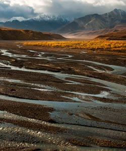 Braided River in Autumn