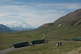 Image of park road with Denali in the background