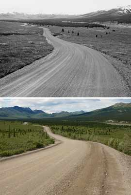Two photos of the same view on the park road (Teklanika flats), one taken in 1962, one in 2012