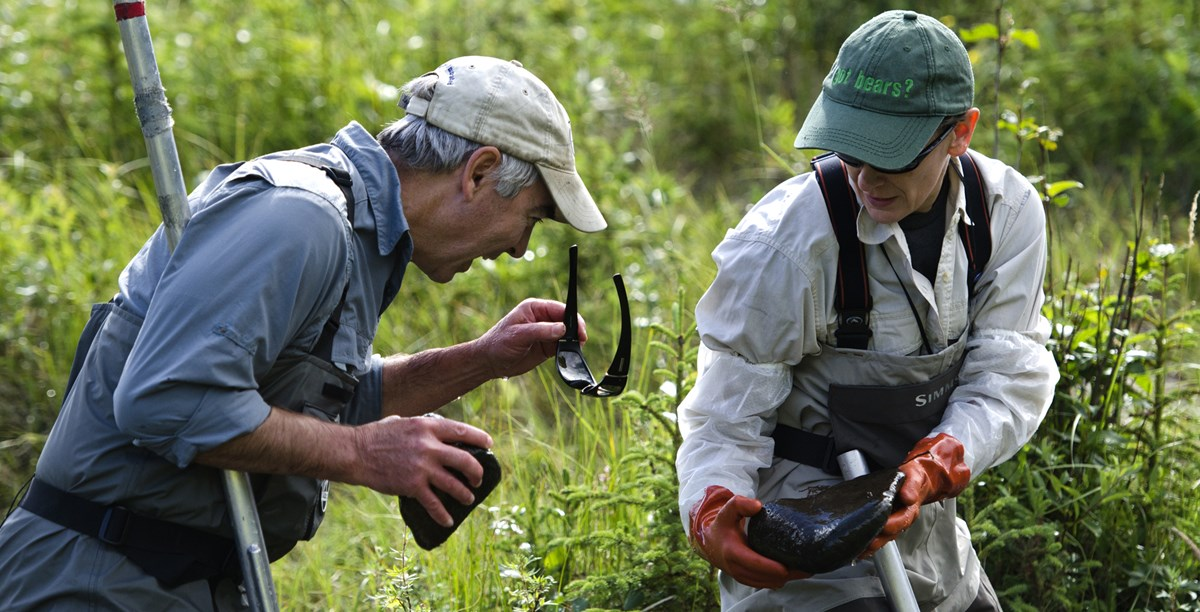 two researchers in waders look for insects on a rock
