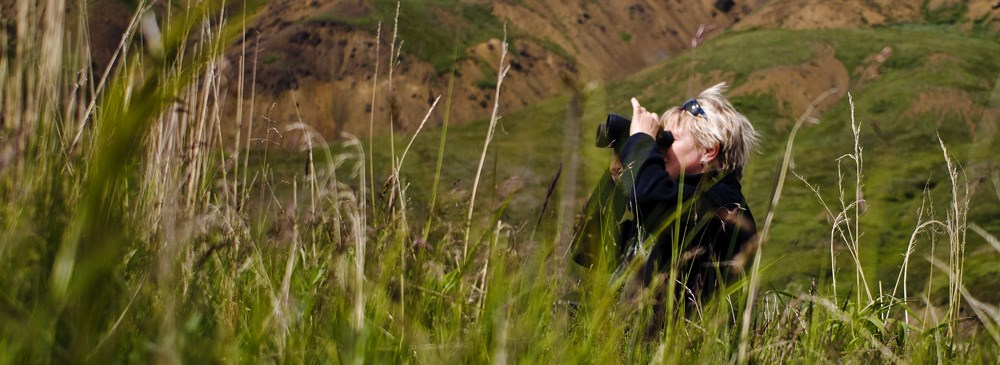 a woman stands in tall grass while using her binoculars