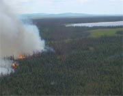 Fire in western portion of Denali National Park & Preserve, 2002