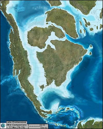 Denali's Cretaceous Climate & Landscape   Denali National Park