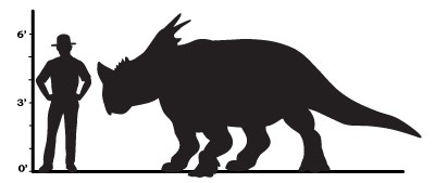 a size comparison that shows a pachyrhinosaur would be about a foot taller than an average man