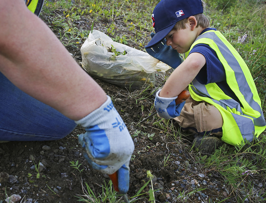 young boy digging in the ground with a small trowel