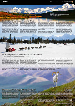unfolded brochure with images of a dall sheep, a dog team mushing across a snowy landscape, and a lake in front of steep, snowy mountains