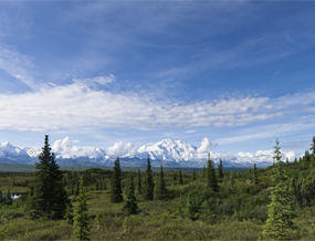 Viewing Mount McKinley from Wonder Lake Campground