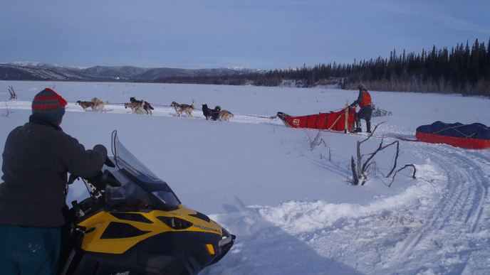 woman sitting on a snowmobile looking at a musher and team of dogs