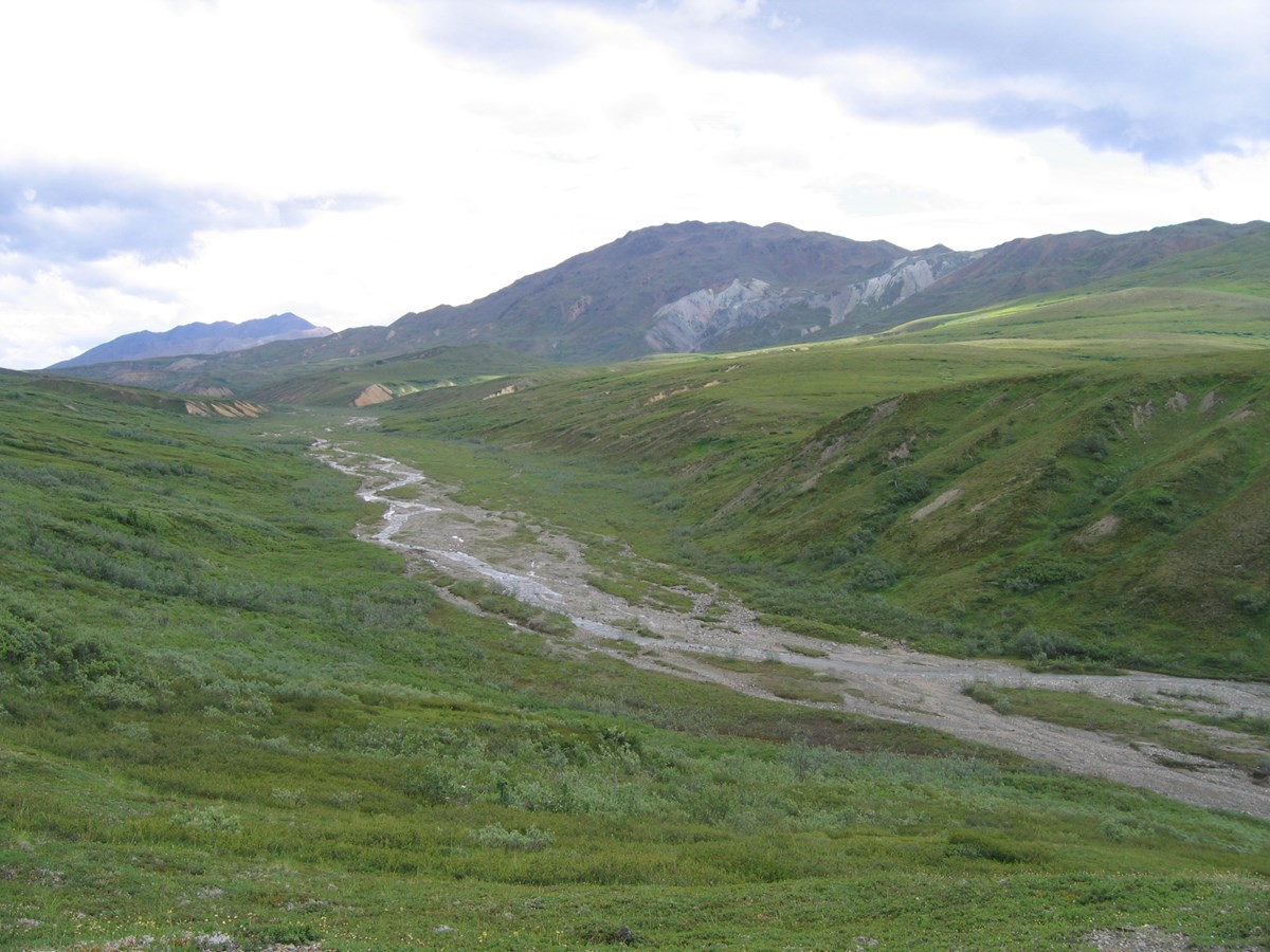 green hills on either side of a shallow creek