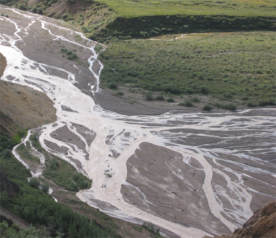 Braided River Channel