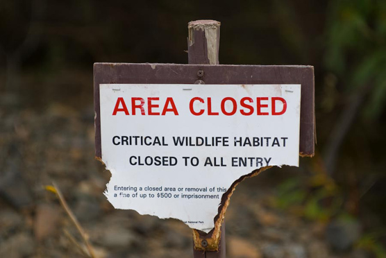 "a half-eaten wood sign with the words ""Area Closed: Critical Wildlife Habitat Closed to All Entry"""