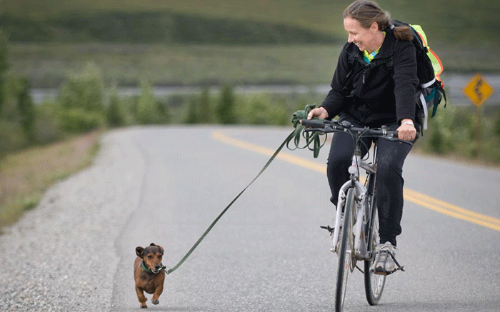 a laughing woman riding a bike, attached to a tiny dog by a leash