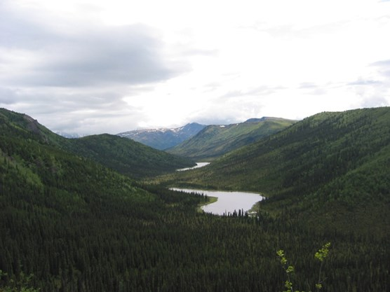 several narrow lakes between tall, forested hills, under a cloudy sky