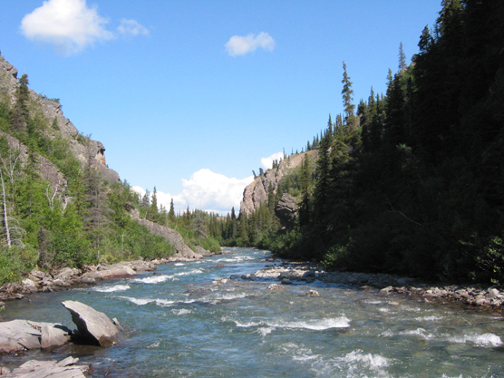 a shallow, rock-filled creek running through a forested canyon