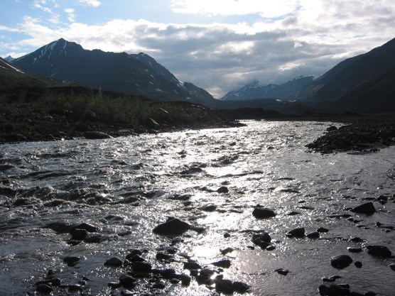 a wide, shallow river flowing between mountains