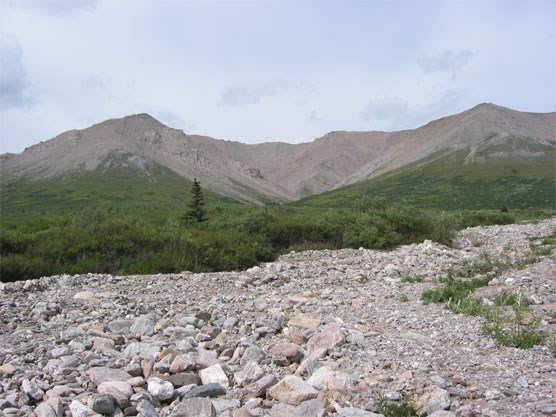 A dry creekbed leading up to low mountains