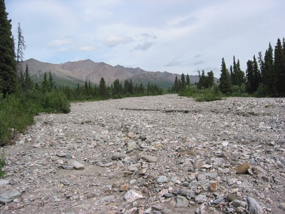 A dry creekbed leading to Healy Ridge