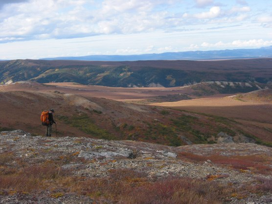 a hiker looking out over rolling hills tinged red and yellow by autumn foliage