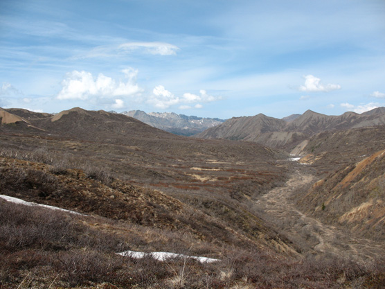 Unit 31 Polychrome Mountain Denali National Park