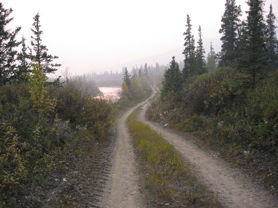 The road along Moose Creek