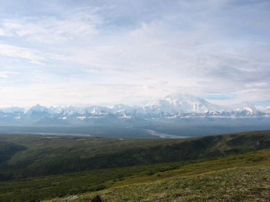 Mount McKinley and the Muddy River, seen from Mt. Brooker